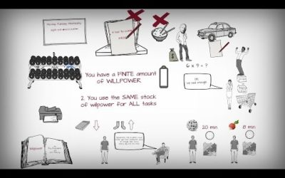 Roy Baumeister et John Tierney – Willpower (animatics)
