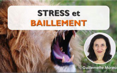 Stress et Bâillement