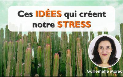 Ces idées qui causent notre stress